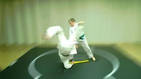Tai Shin Doh Karate Martial Arts