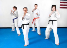 Tai Shin Doh Karate Martial Arts
